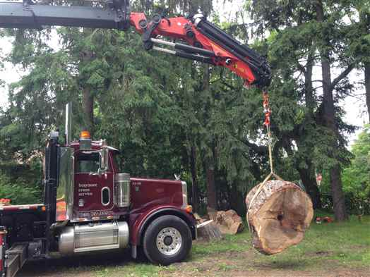 Crane 1700 pound piece of tree trunk 90 feet from truck.
